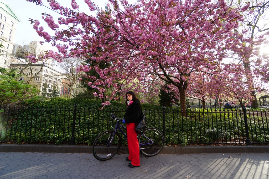 Sharon Genshaft stands in red pants next to her bike outside a NYC park gate with a purple budded tree behind her