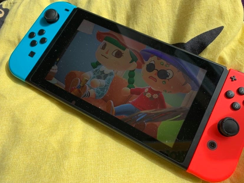 photo of animal crossing video game on a nentendo switch